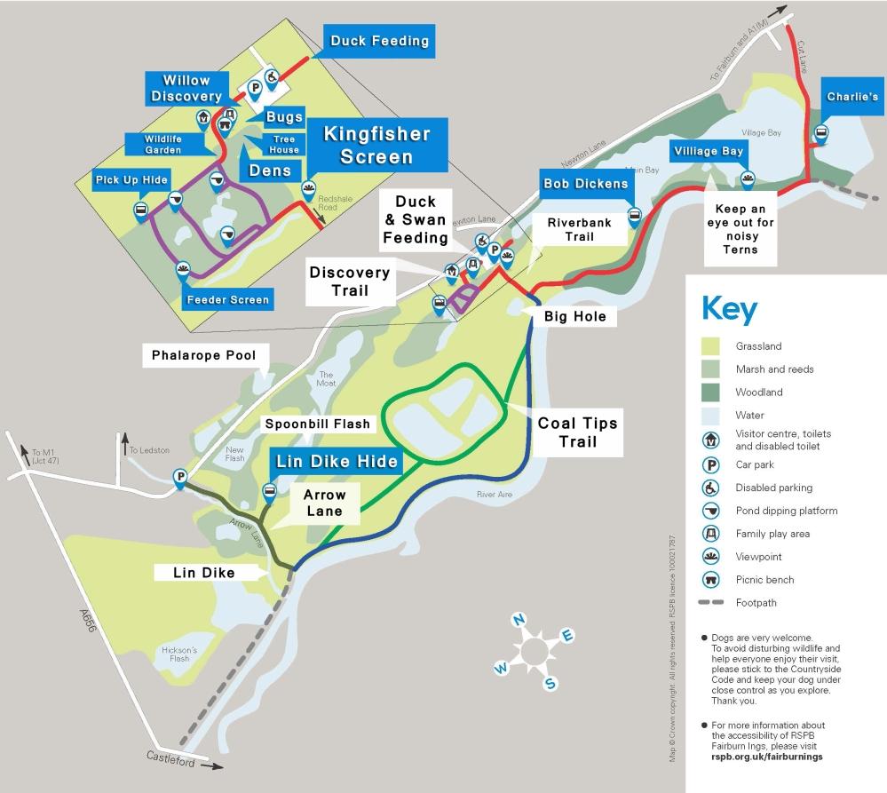fairburn-ings-trail-guide-298343-large-txt